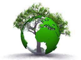 CeCler 2017, une Association Eco-responsable